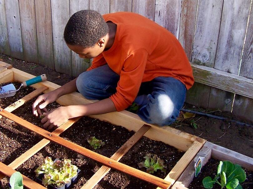 Le compost : comment et avec quoi le réaliser ?