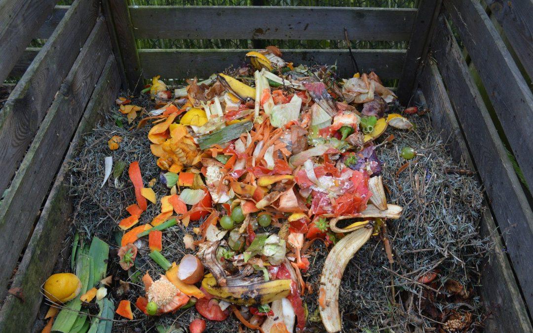 Le compost : un atout pour le potager