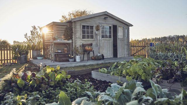 Quels matériaux pour un abri de jardin ?
